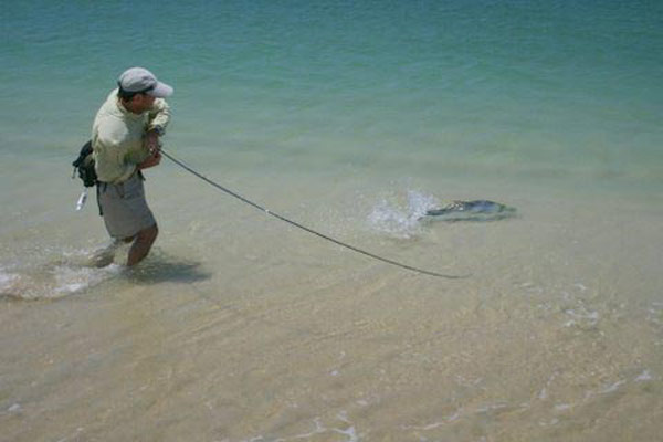 surf fishing, Reel Combo